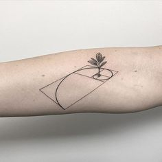 Fibonacci tattoo designs are among the most interesting and aesthetic geometry tattoos. In mathematics, Amazing Fibonacci Tattoo Designs Fibonacci Tattoo, Tatouage Fibonacci, Fibonacci Flower, Original Tattoos, Subtle Tattoos, Small Tattoos, Line Tattoos, Body Art Tattoos, Sleeve Tattoos