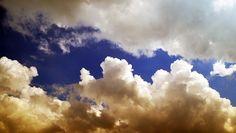 "Profecía Al Día: Por creer ""palabra profética"" se salvaron 18 ex-mu..."