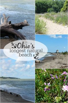 Headlands Beach State Park in Lake County is Ohio's largest natural beach. This nature lover's paradise includes a beach for sunbathers & swimmers, a unkempt beach for beachcombers & birdwatchers, woodlands and dunes. This is also a free Ohio attraction.