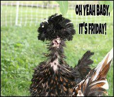 Friday!