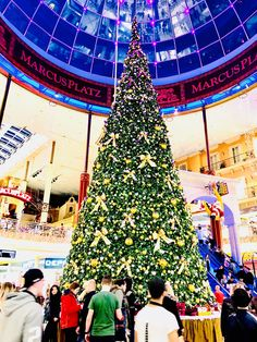 Christmas Tree at Shopping Center Plus City in Linz Austria/ made by MSM Photography 2017 Photography 2017, Shopping Center, Austria, Fair Grounds, Christmas Tree, Holiday Decor, Travel, Linz, Shopping Mall