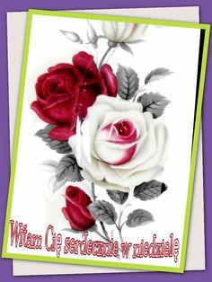 Rose, Flowers, Plants, Polish, Photo Illustration, Florals, Roses, Planters, Plant