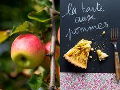 :: gluten free apple pie ::    #gluten free