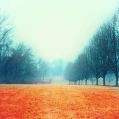 Orange and black landscape photography modern by WalkingToJericho, $20.00