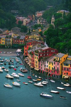 View of Portofino from Castello Brown, Italy