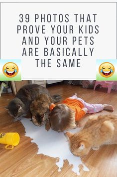 39 Photos That Prove Your Kids And Your Pets Are Basically The Same Animals For Kids, Animals And Pets, Funny Animals, Kids And Pets, Teacup Chihuahua, Teacup Puppies, Tidy Cats, Funny Cat Pictures, Animal Photography