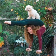 65 best sofie dossi images sofie dossi contortionist youtube - Sofie dossi gymnastics ...