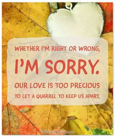 Whether I'm right or wrong, I'm sorry. Our love is too precious to let a quarrel to keep us apart.