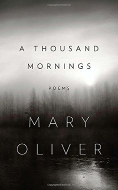 A Thousand Mornings von Mary Oliver http://www.amazon.de/dp/1594204772/ref=cm_sw_r_pi_dp_FlBywb1N5PDVQ