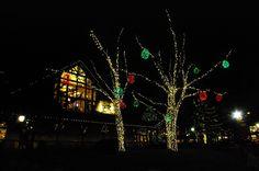 Christmas Lights at LL Bean   Flickr - Photo Sharing!