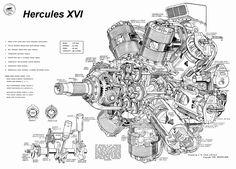 Bristol Hercules cut awaw drawing