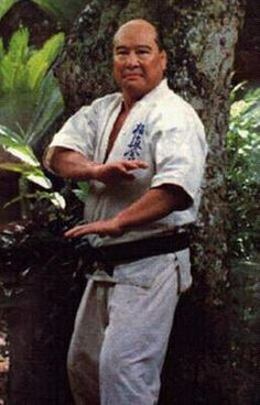 Conoce el arte marcial mas aguerrido del mundo. El Kyokushin