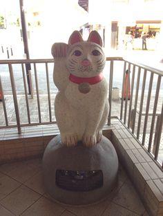 招き猫@豪徳寺駅