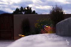 "Persistence Photography: ""Colorado Landscaping Photographer"""