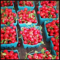 elusive summer sour cherries at the farmer's market for brandied cherries Sour Cherry, Fruit In Season, How To Make Homemade, Cherries, Farmers Market, Cocktails, Stuffed Peppers, Vegetables, Cooking