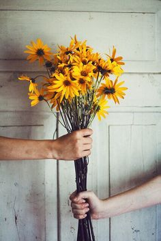 Uploaded by Find images and videos about vintage, nature and flowers on We Heart It - the app to get lost in what you love. Flower Yellow, My Flower, Pretty Flowers, Wild Flowers, Plants Are Friends, Mellow Yellow, Color Yellow, Van Gogh, Planting Flowers