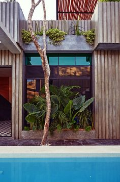 casa T, Tulum, Studio Arquitectos