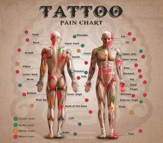 Estimated tattoo pain levels