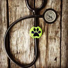 Stethoscope ID Tag, Stethoscope Name Tag, Nursing Graduation Gift, Monogram, Vet Tech Bag by customvinylbydesign on Etsy https://www.etsy.com/listing/294582465/stethoscope-id-tag-stethoscope-name-tag