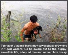 Faith In Humanity Restored. That is the essence of hot to me. Not some redneck that beats, shoots or hurts animals