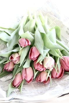 Tulips are a beautiful, eye-catching flower. Tulips are lovely for creating spaces and for wedding flowers and arrangements... and can be found year-round at GrowersBox.com!