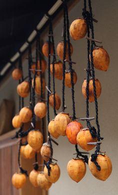 Japanese persimmon, kaki