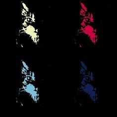 Giselle Warhol #cat #mycat #giselle #andywarhol #warhol