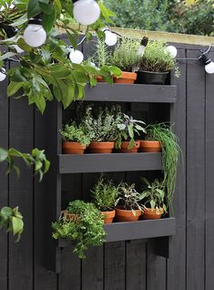 4 Ways To Make The Most Of Your Tiny Garden+#refinery29uk