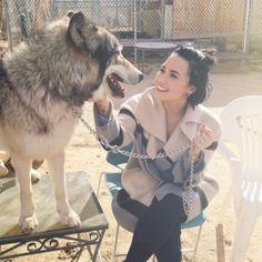 Demi Lovato Lets Wilmer Valderrama Go To The Wolves - http://oceanup.com/2016/01/31/demi-lovato-lets-wilmer-valderrama-go-to-the-wolves/