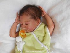 Lincoln laura lee eagles (2)