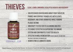 Young Living Thieves Essential Oil Blend | Part of the premium kit with a FREE book at www.thewelloiledlife.com/premiumkit!