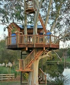 Tree house Cooles Baumhaus Ideen Choosing the Right Wallpaper Article Body: There i Beautiful Tree Houses, Best Tree Houses, Kid Tree Houses, Cool Tree Houses For Kids, Luxury Tree Houses, Tree House Plans, Tree House Homes, Adult Tree House, Tree House Deck