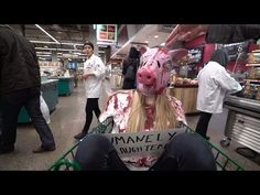 #TrollFoodsChallenge - Exposing the Humane Lie - YouTube