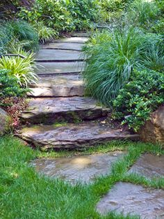 The bluestone flagging pathway with boulder steps leads to the spa and patio area.