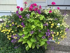Contained Gardens - Page 12 of 62 - Custom designed flower planters for every…