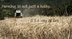 """""""L'agricoltura non è un hobby… E' uno stile di vita""""  E' vero: fare il contadino – anche solo nel tempo libero – significa cambiare completamente stile di vita. L'agricoltura è la passione del mezzadro di Beufville, quindi indirettamente un po' anche la mia. Se fai il coltivatore (o se vivi con il mezzadro), sai …"""