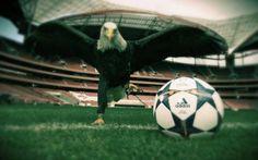 """Sfida al """"Brazuca""""... Ora anche la Champions ha il suo pallone! #brazuca # #champion # #pallone"""