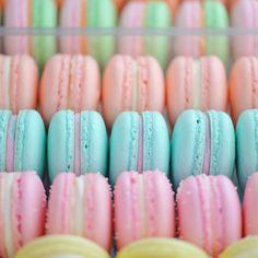 Macarons today are piña colada, raspberry, fuzzy peach, rainbow sherbet, rose lemonade, cotton candy, bubble gum and lemon cheesecake {made by @_siaaaaaa_ & @nicolettecostello} #sweetbakeshop