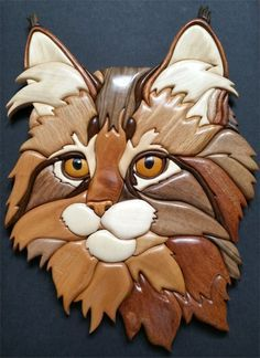 My intarsia #14 Maine coon kitten (Janette Square pattern)