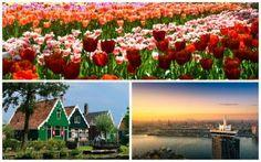 Excursão: VISITA a Keukenhof, Zaanse Schans e Amsterdam