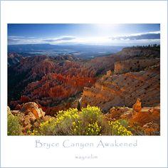 Bryce Canyon Awakened - Bryce Canyon, Utah
