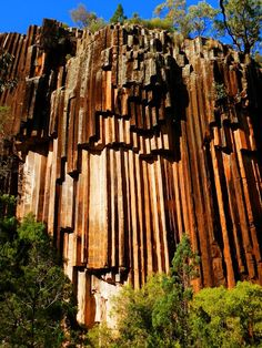 Sawn Rocks, Mt Kaputar NP, New South Wales, Australia. This NP surrounds the proximities of Mount Kaputar, a volcano active between 17 & 21 Ma.  I've been here and it's amazing!