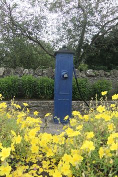 Village pump in Ballacolla, Co. Laois