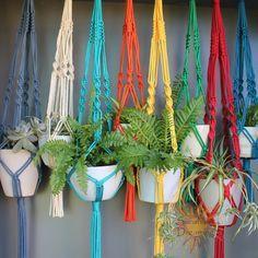 Grandes suspensiones de planta de Macramé en colores surtidos.