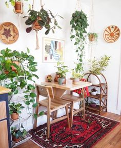 9 Youthful Simple Ideas: Home Decor Living Room Boho cheap home decor for apartments.Home Decor Contemporary Living Room home decor apartment vintage.Home Decor Ideas Elegant. Living Room Decor, Bedroom Decor, Bedroom Plants, Master Bedroom, Dream Apartment, Bohemian Apartment, Apartment Plants, Small Dining, Dining Room Design