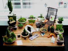 Show Garden Gallery 1