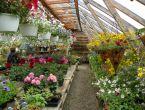 Aux Mille et Un Jardins Inc. | Commerce Péninsule