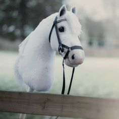 Hobby Room Crochet - - - Hobby De Cetim Branco - - Hobby Ideas List Of Percheron Horses, Haflinger Horse, Mare Horse, Horse Mane, Horse Stables, Hobbies To Take Up, Hobbies For Women, Pretty Horses, Beautiful Horses