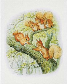 Squirrel Nutkin - Beatrix Potter - Peter Rabbit - Baby shower party - Whimsical…
