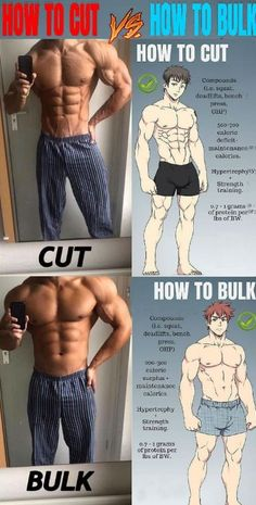 10 Rules For Building Muscles On Bulking Phase It should be noted that your bulking phase should always come before your cutting phase. This is because the primary purpose of your bulking workout should. Fitness Workouts, Weight Training Workouts, Gym Workout Tips, Fitness Tips, Fitness Motivation, Body Weight Workouts, Insanity Fitness, Lifting Motivation, Workout Abs
